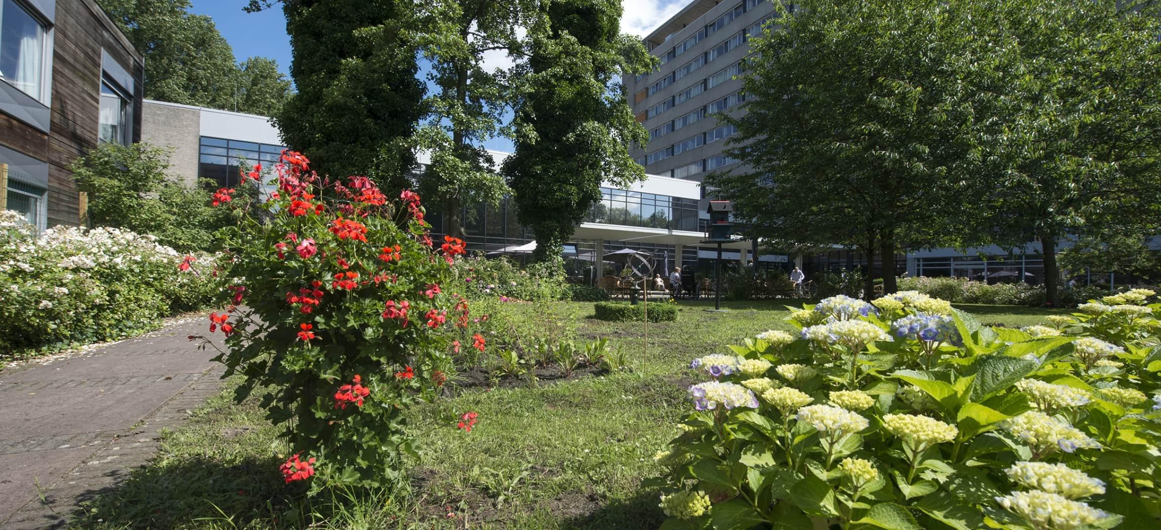 Bloemen en struiken in een binnentuin