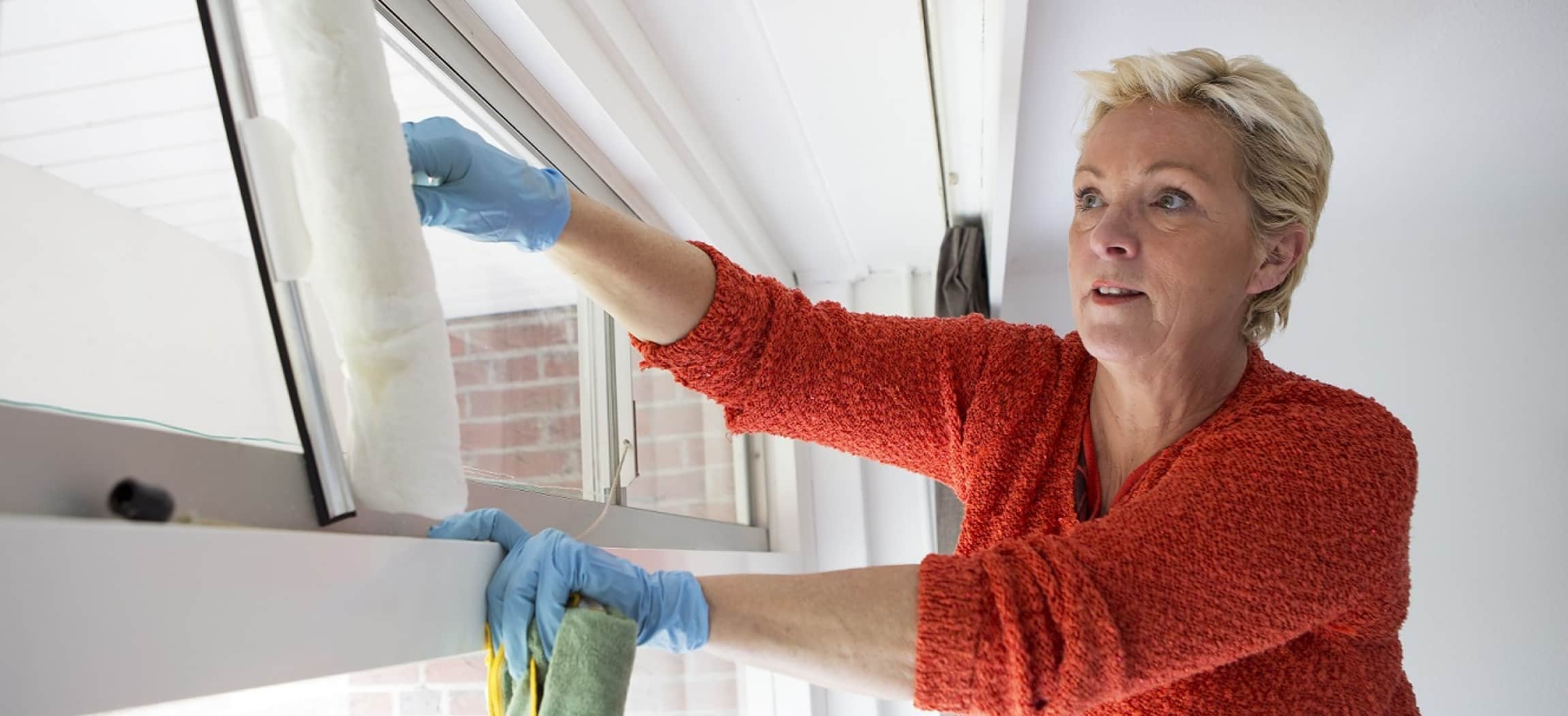 Afbeelding van Huishoudelijke hulp