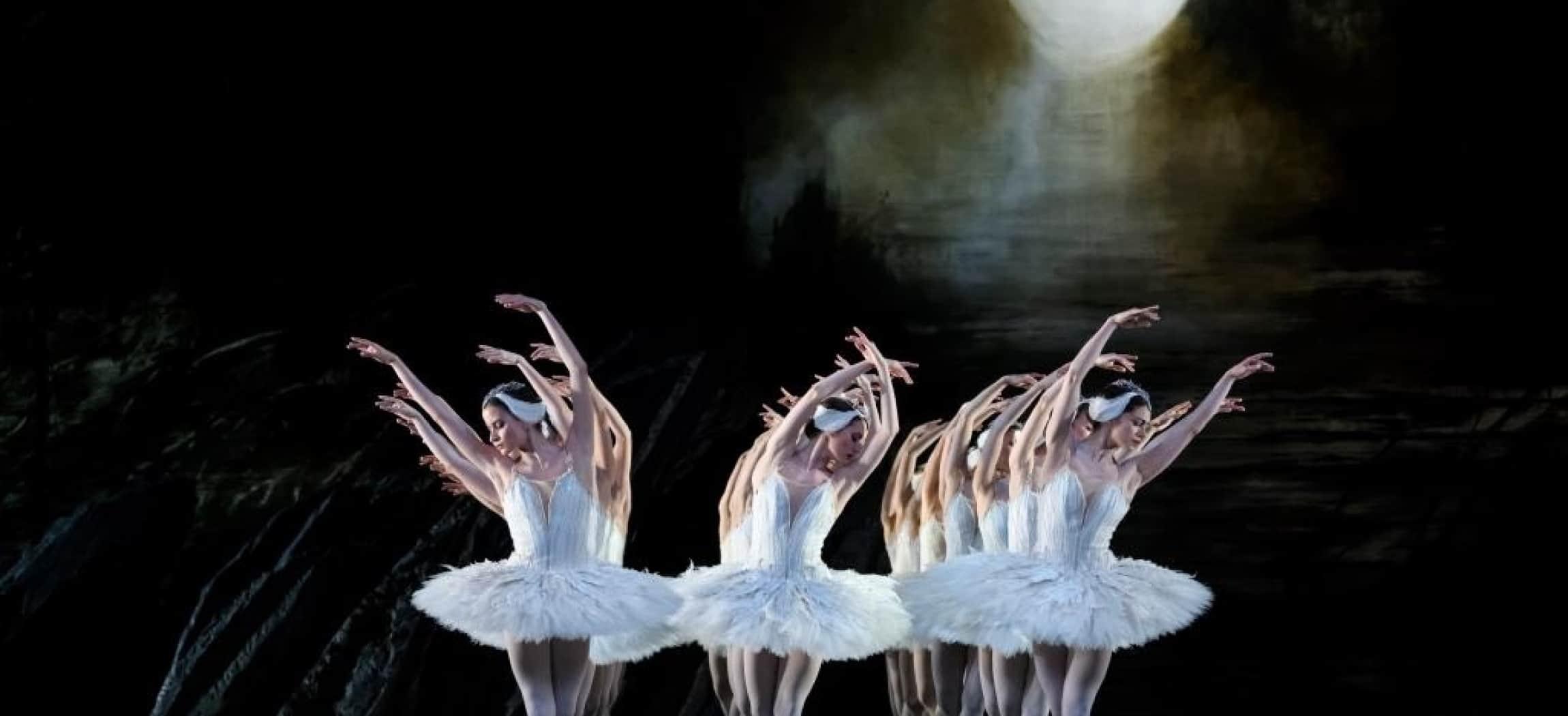 Balletdanseressen Zwanenmeer met witte veren tutu's