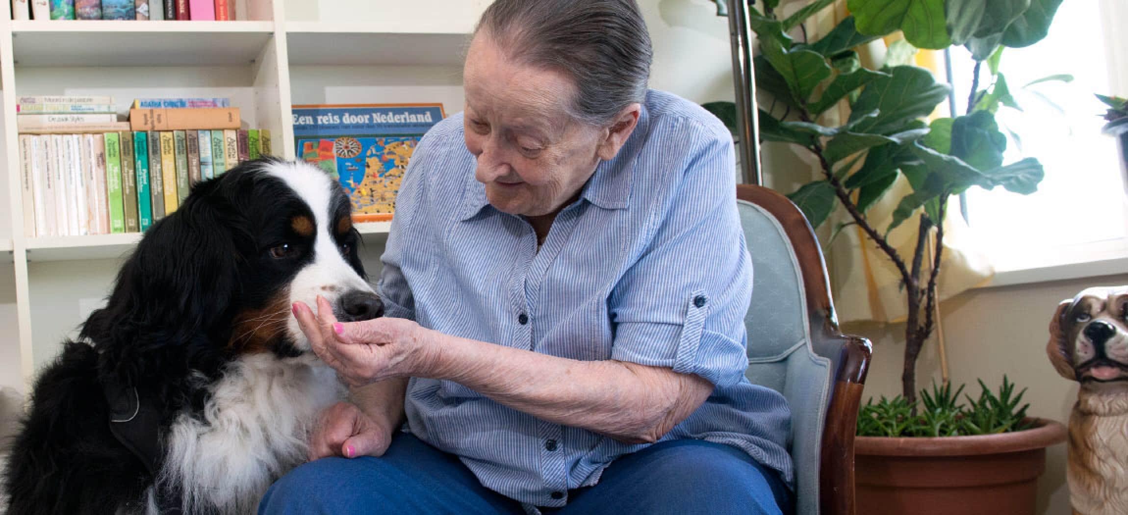 Afbeelding van Vreugdehof bij dementie